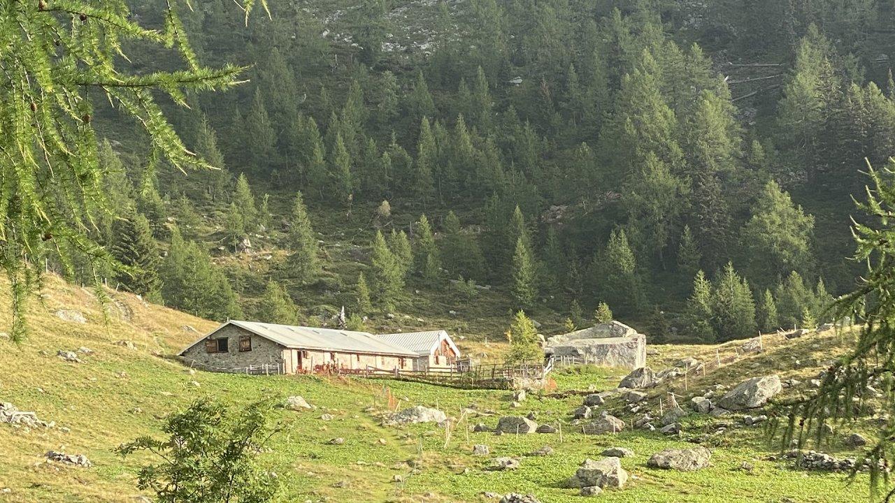 Fenestral alpine dairy
