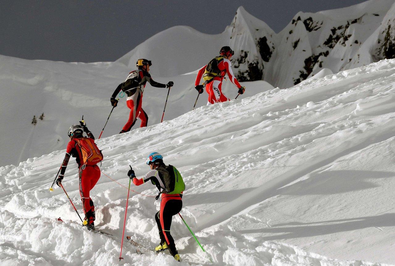 Alpiniski