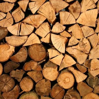 Brennholz und Schnittholz