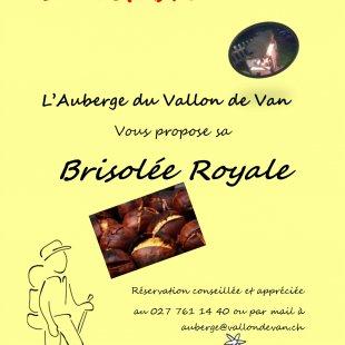 Brisolée royale