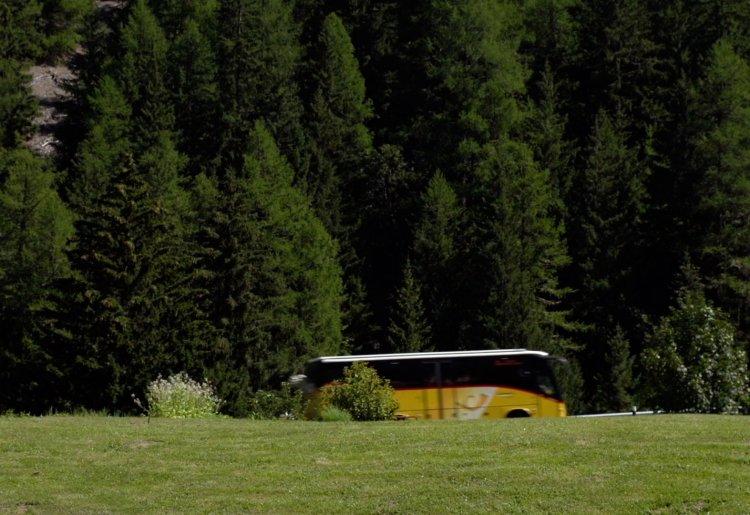 Bus de Trient