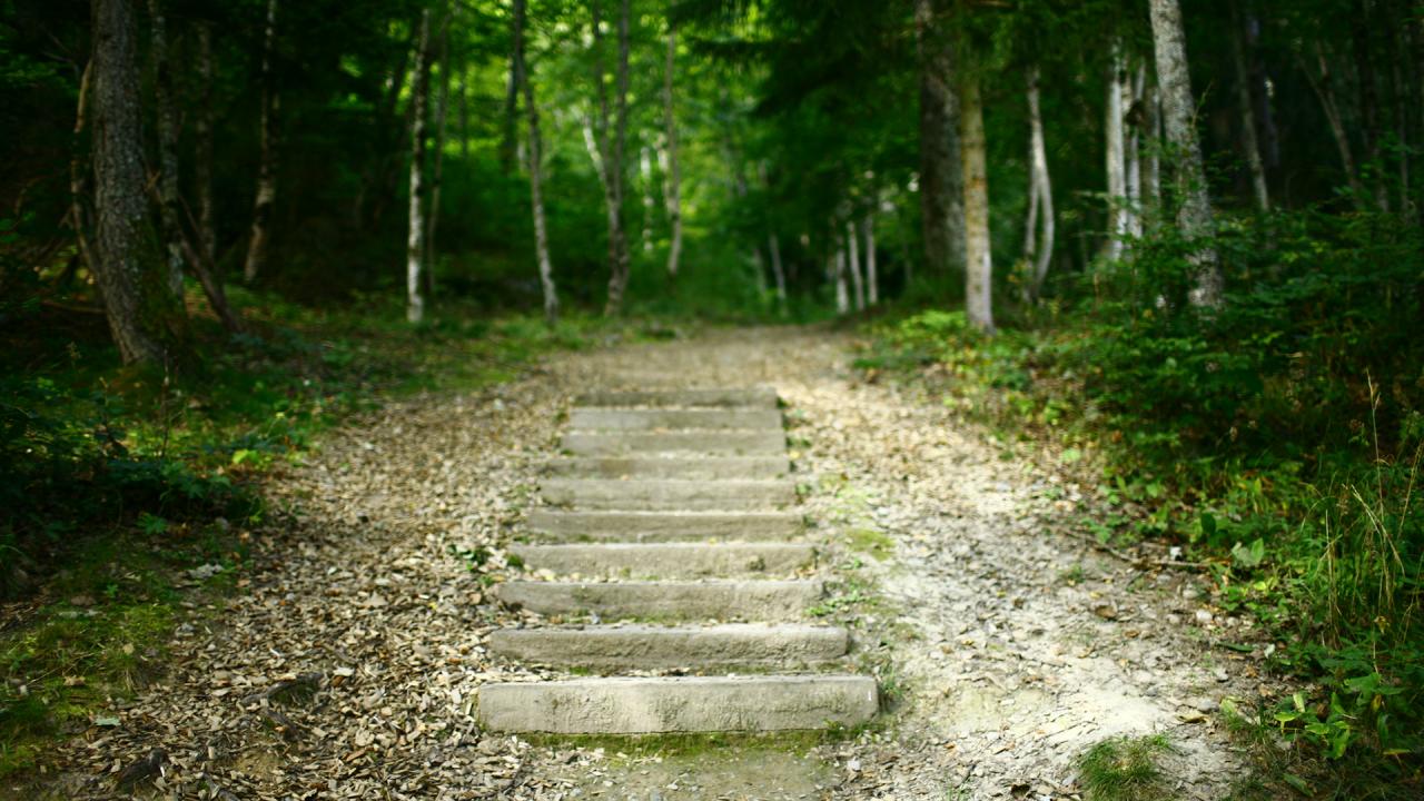 Route des Diligences / ViaCook