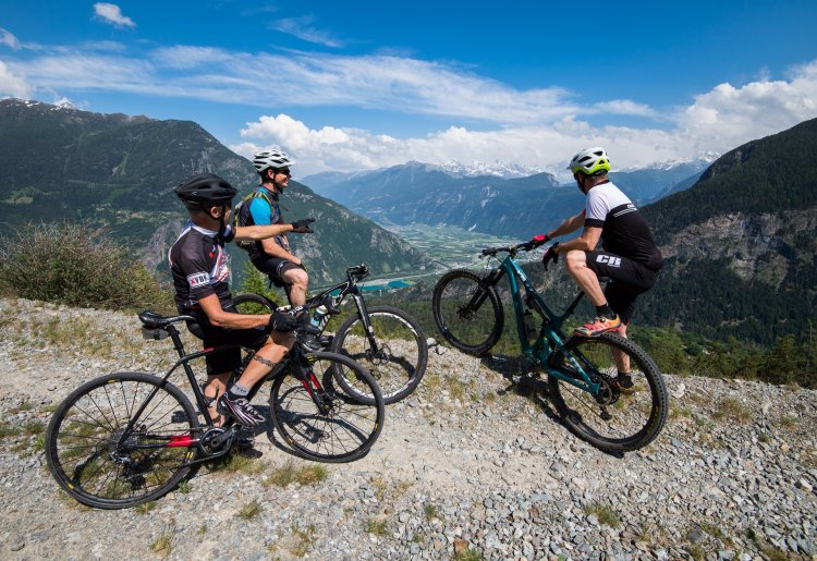 Road cycling, mountain bike and gravel