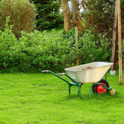 Jardin clean