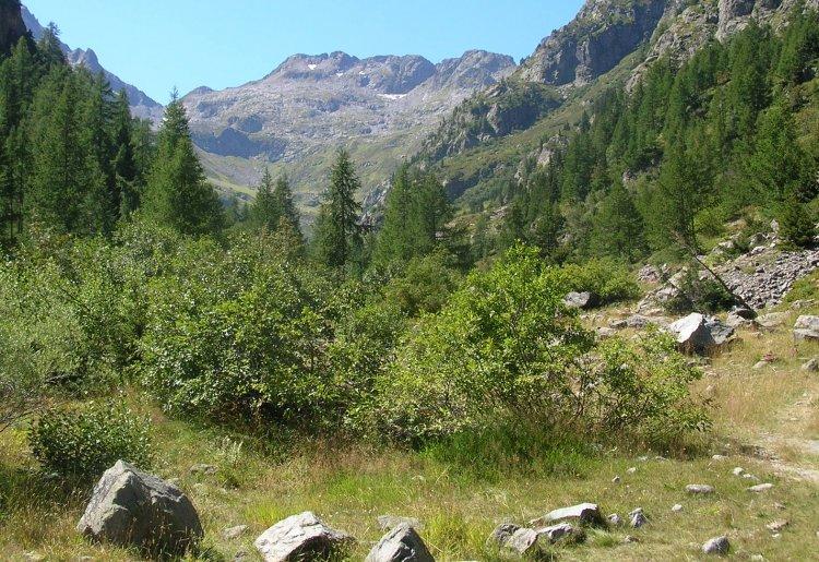 Réserve naturelle du Vallon de Bérard