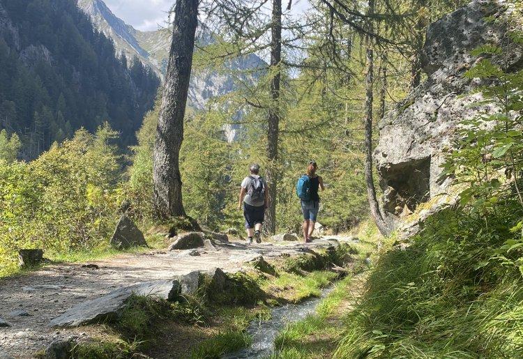 Hiking and trail